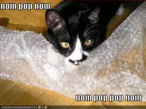 Black and white cat chewing on bubble wrap. Text reads: Nom pop nom nom pop nom