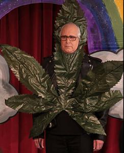 Pierce dressed up as marijuana