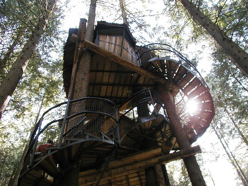 A wooden treehouse with a spiral staricase, photographed from below with the sun shining through the wooden slats.