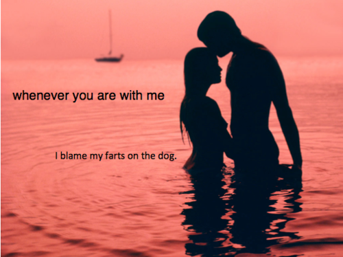 Background: red-tinted seascape with a sillouette of a couple embracing. Text reads: Whenever you are with me, I blame my farts on the dog.