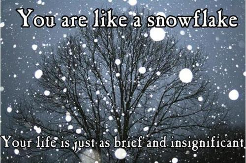 Background: Snow falling in front of a barren tree at night.  Text reads: You are like a snowflake.  Your life is just as brief and insignificant.