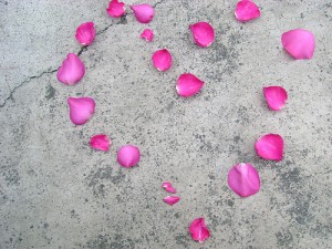 pink flower petals in the shape of a heart