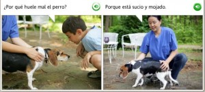 "Screen shot from Spanish language learning software.  First panel has a young boy looking at a dog saying ""Por que huele mal el perro?"" The second panel shows a woman and the dog, the woman says ""Porque esta sucio y mojado"""