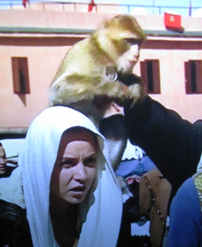 Alexandria is surprised to find a monkey on her head.