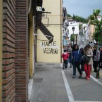Hazte Vegano street art