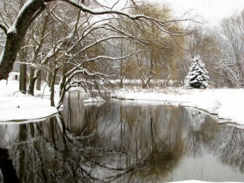 Outdoor photograph of a lake in winter, with snow and ice covered trees and snow on the ground.