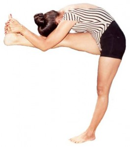 Rajashree in Standing Head to Knee, forehead touching the knee, excellent form.