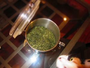 airtight container holding green tea