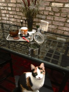 adorable Calico cat clearly annoyed that she's not the center of the photo shoot. Behind her, a tea tray with a pot of tea and mug, and an airtight container with tea