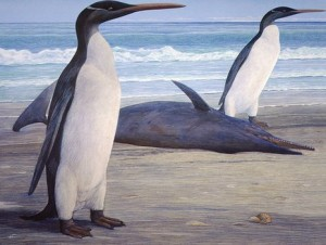 artist's impression of prehistoric penguins