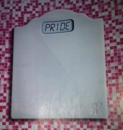 Pride scale