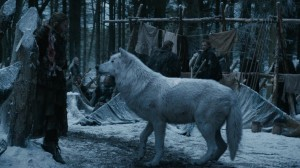the direwolf Ghost comes up to Gilly