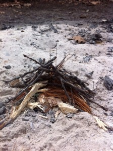 A picture of tinder surrounded by twigs for starting a fire