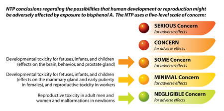 5 point chart showing risks of BPA exposure.