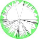 Tree of Life diagram