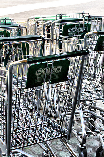pic of several shopping carts