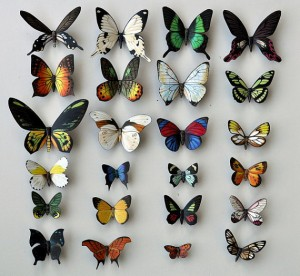 Pic of Butterfly Moth Magnets, 24