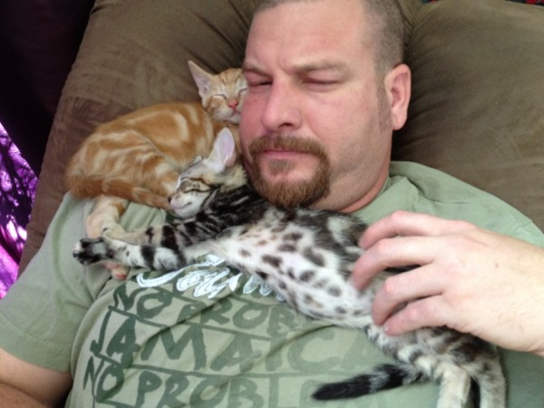 photo of Jon with grey tabby and orange tabby kittens wrapped around his neck