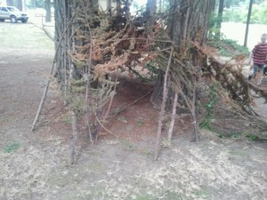 Fort made of tree branches