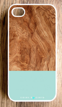Wood And Mint iPhone Case