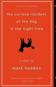 The Curious Incident of the Dog at Night-Time by Mark Haddon (cover)