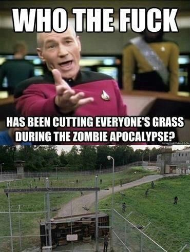 "Two frames. 1) Picard meme captioned ""Who the fuck has been cutting everyone's grass during the zombie apocalypse?"" 2) Shot of neatly manicured grass."