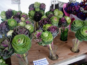 Bouquets made of small heads of kale and purple cabbage
