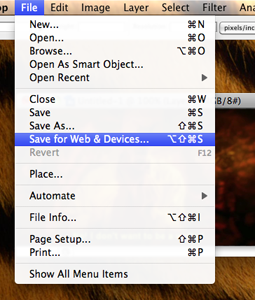 Screencap of the Photoshop menu dropdown described above