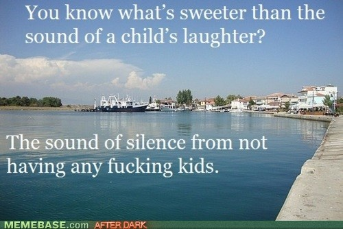 """a photo of a coastline with the words """"You know what's sweeter than the sound of a child's laughter? The sound of silence from not having any fucking kids."""""""