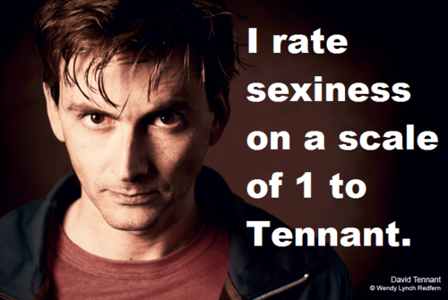 "Picture of David Tennant captioned ""I rate sexiness on a scale of 1 to Tennant"""