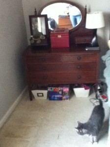Picture of a dresser and surrounding floor after cleaning.
