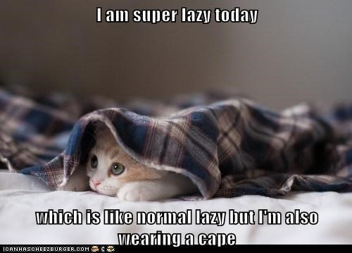 "Kitten with its head peeping out from under a plaid flannel shirt, captioned, ""I am super lazy today, which is like normal lazy but I'm also wearing a cape."""