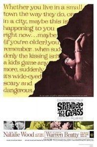 Movie poster from Splendor in the Grass