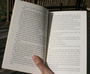 Photograph of a paperback book in full sunlight
