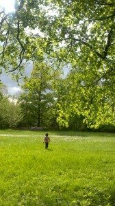Small child walking across a grassy knoll surrounded by trees.