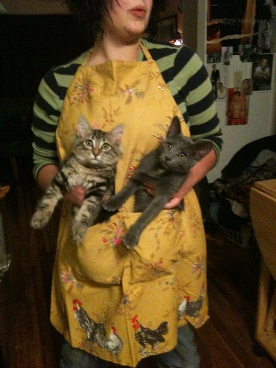 Hannah, wearing an apron and holding two cats