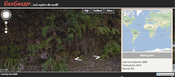 Screencap from GeoGuessr of some ferns on an embankment