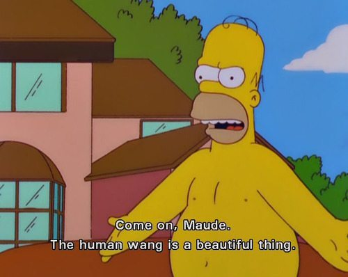 """Homer Simpson, naked, saying, """"Come on Maude. The human wang is a beautiful thing."""""""