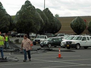 A parking lot with people spreading large nets