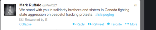 Image of Mark Ruffalo twitter post in support of Elsipogtog