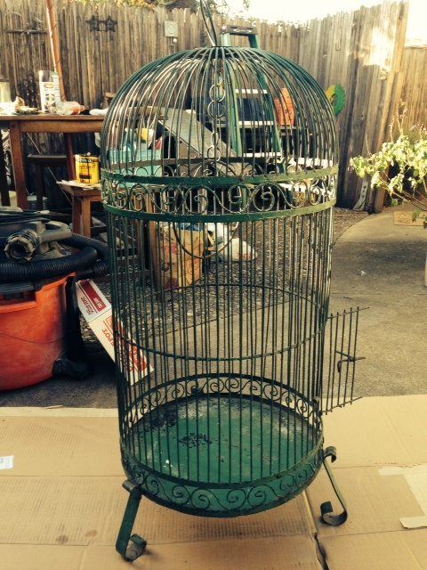 Green tall birdcage in a backyard full of junk