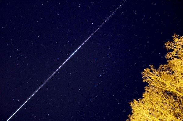 Streak of light showing the International Space Station's passage across the night sky, with a tree below.