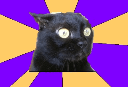 A cat with it's ears back and wide eyes sits against a purple and yellow, striped background.