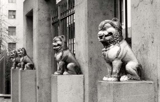 A picture of Foo Dogs.