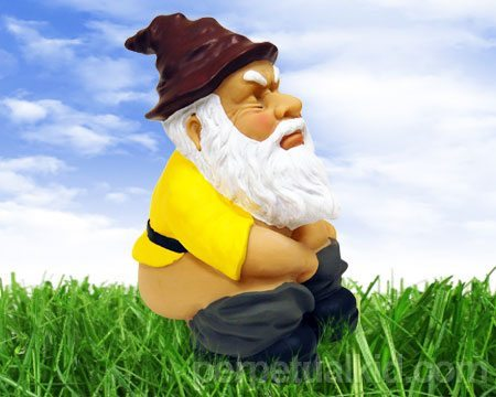 photo of a garden gnome in a yellow top and blue pants with a brown hat and white beard with his pants pulled down squatting like he is pooping on the lawn