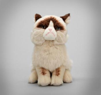 photo of Grumpy Cat Plush Toy
