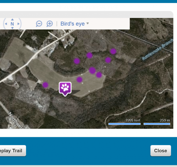 A map view from the Tagg pet tracker.