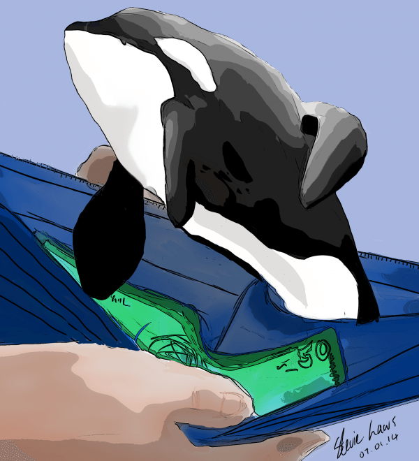 A painting of a black and white killer whale.