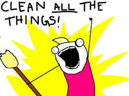 """An image from Hyperbole and a Half of a simply-drawn woman in pink captioned """"clean ALL the things!"""""""