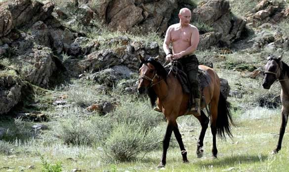 Picture of a shirtless Putin on horseback.